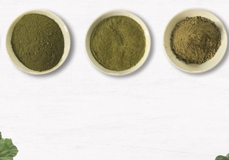 So, You Are New To Kratom?