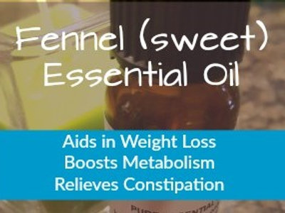 Fennel (sweet) Essential Oil (Foeniculum vulgare) 100% Pure and Natural