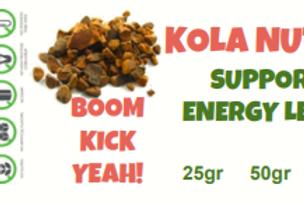 KOLA/COLA NUT~ C/S