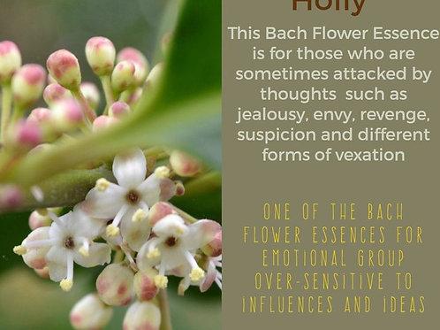 HOLLY-Bach Flower Remedy