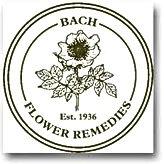 bachflower-calgary.jpg