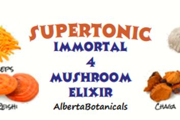 IMMORTAL 4 Mushroom Elixir~SuperTonic~Mini Drops