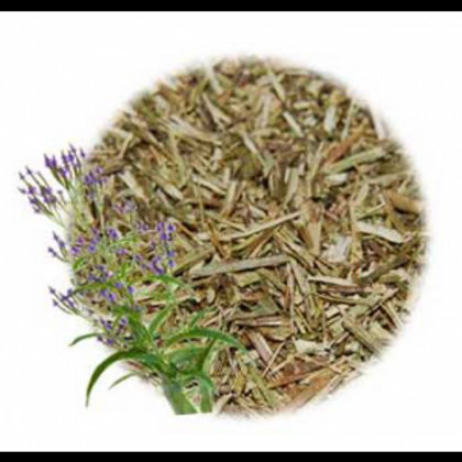 BLUE VERVAIN  (Verbena hastata)  cut and sifted