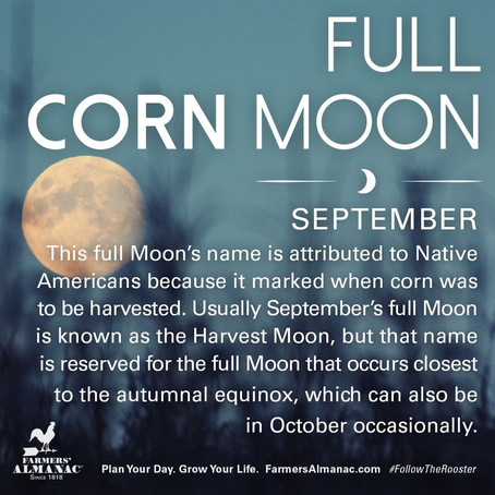 LOOK For Some Cool Moon Magic FULL MOON SEPT. 1ST & 2ND