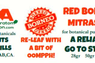 RED BORNEO~ MitraSpec
