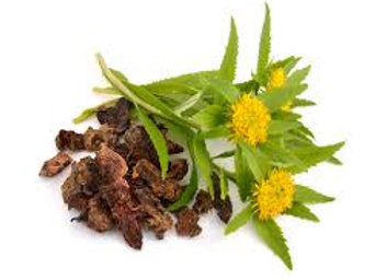 Rhodiola Rosea~ Powder or Whole Root