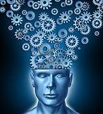 cerveau 2.jpg