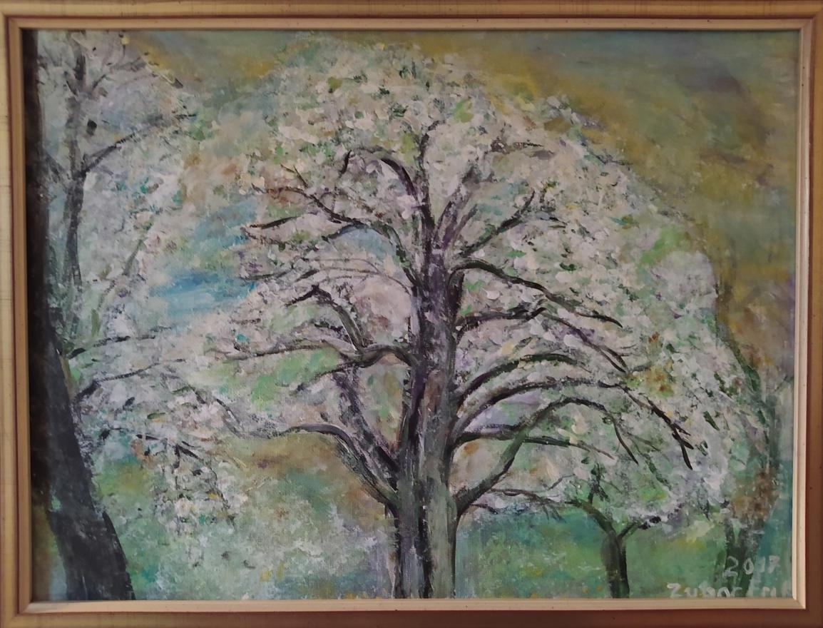 Virágzó körtefa