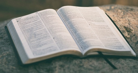 Sermon Study Notes: Love God Love People