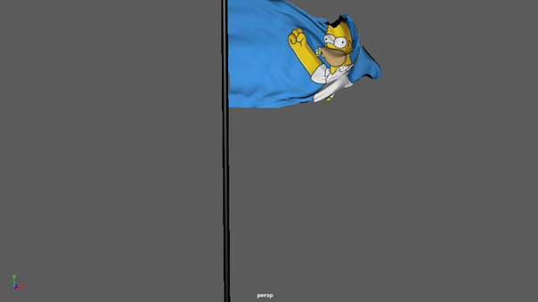Flag simulation