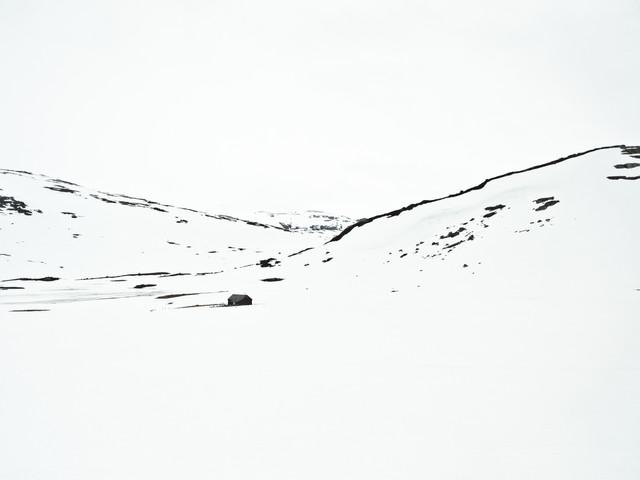 Bergensbanen View