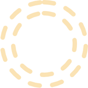 background_yellow_2 (1).png