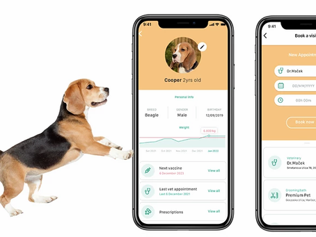 Launching Fast with a Digital-First Pet Insurance Solution
