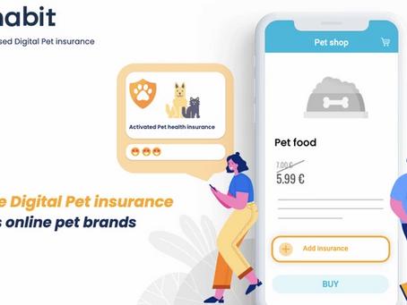Buying Pet Insurance Where It Matters