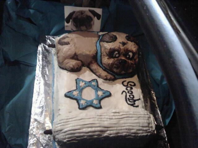 Pug Holy Torah