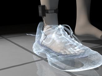 Virtual Feet X Ray