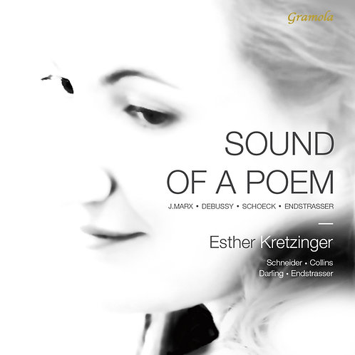 Sound of a Poem (Vinyl + Book)