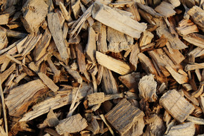 Ministry of Natural Resources and Forestry Releases Draft Forest Biomass Action Plan