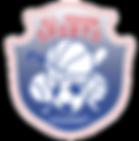All Season Sports Academy Logo