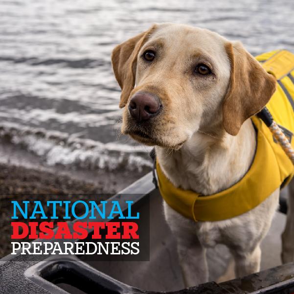 09-10-19_National-Disaster-Preparedness_