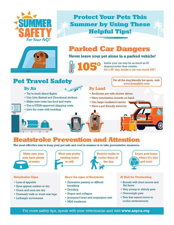 Summer Safety Flyer-01.jpg