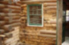 Log Home Damage.jpg