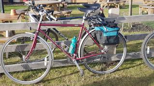 Are bikes like horses?