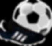 soccer-155947_1280.png