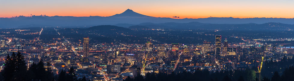 portland_night_skyline_cropped.jpg