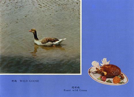 Roast goose.jpg