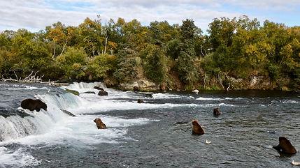 by Brooks Falls NPS Photo: N.Boak, 21 Se