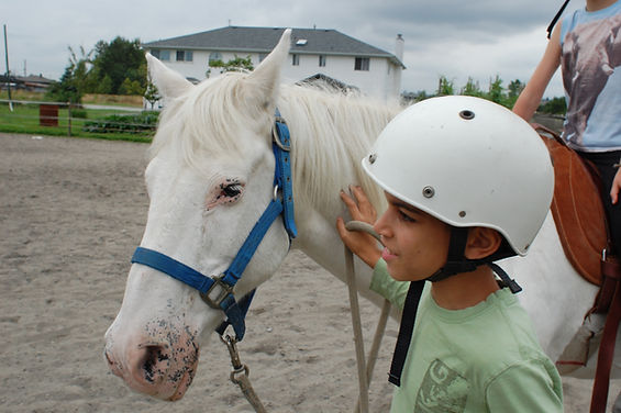 Natural Horsemanship and riding lessons just outside of beautiful Vancouver, British Columbia
