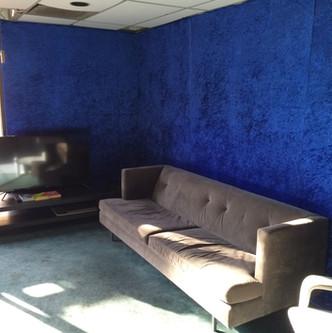 """The Velvety Blue """"Green Room"""""""