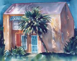Palm Shadow House