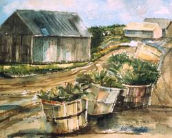 Barns and Baskets