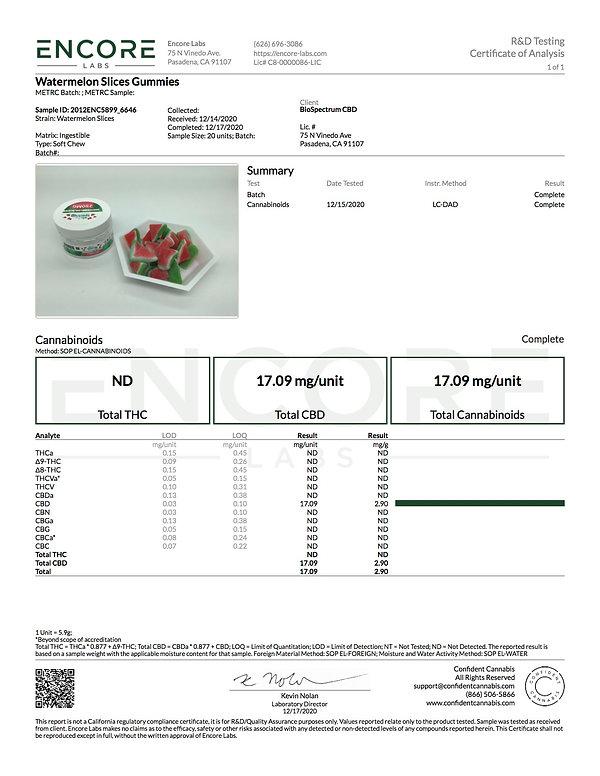 Watermelon Slices Analytics jpg.jpg