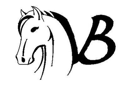 Logo cavaliers étho Violaine Braun