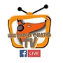 logo les lives.png