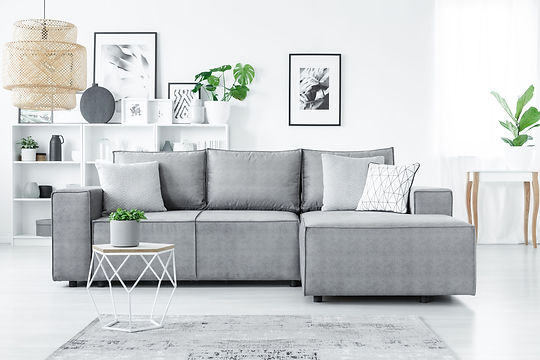 Modern living room with grey sofa with cushions and green pot plants around the room_