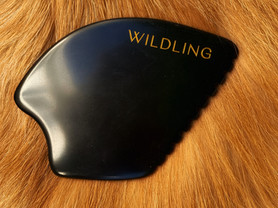 Does Your Pet Need Gua Sha?