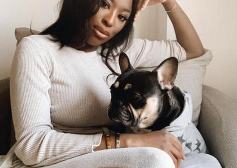 5 Of My Favorite Black Owned Pet Brands