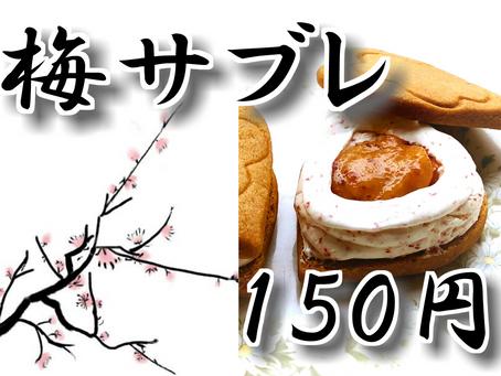 新発売!!梅サブレ!!