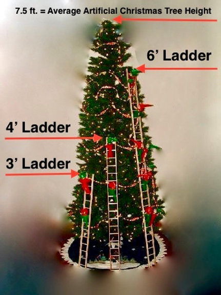 Large Ladder (6')