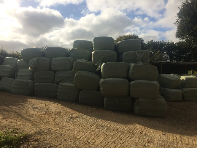 Haylage-HydePark 700 cubic volume- meadow grass , 2nd cut