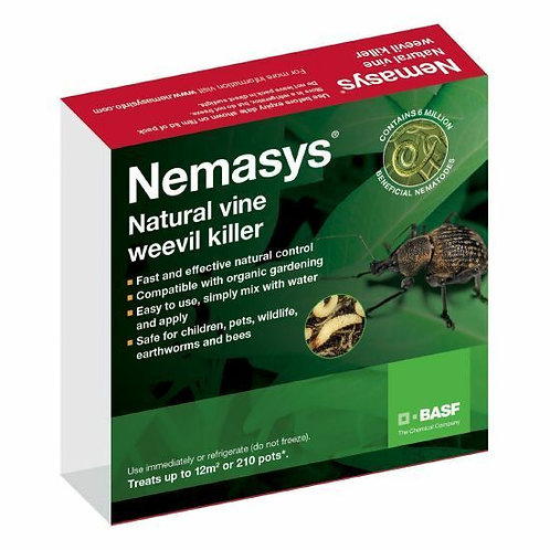 Vine Weevil Nematodes Treats 12 sq m