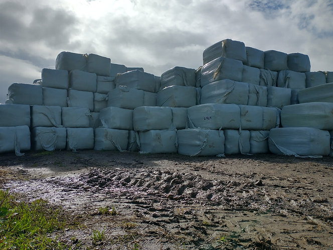 AA  Special Reserve Top Quality Haylage  4.5 foot  2100 quadrants