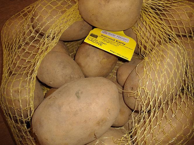 Nadine second early potato.