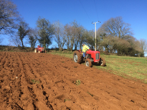 double ploughing 2017