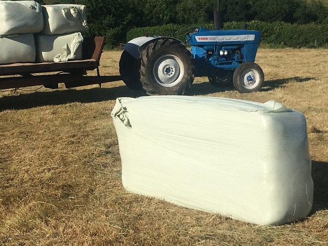Haylage Big Field- 608 cubic volume meadow / rye mix