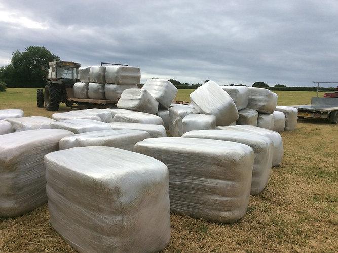 Haylage -Fowls field- 2nd cut  meadow / rye
